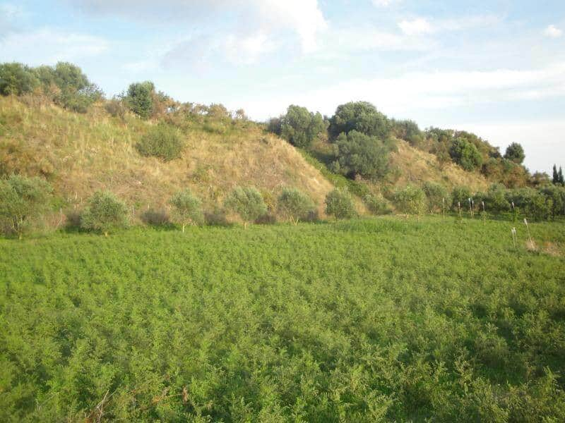 Plot for sale in Lixouri_3