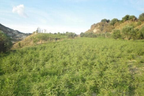 Plot for sale in Lixouri_4