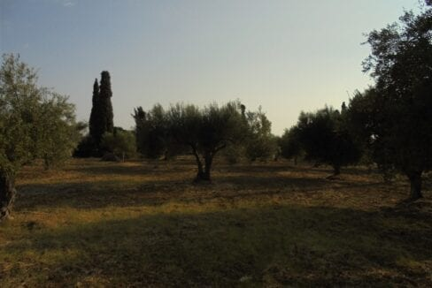 Plot for sale in Svoronata_1